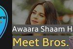 Awaraa Shaam hai guitar chords by Meet Bros