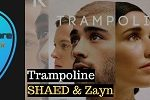 Trampoline Guitar Chords by Shaed and Zayn Malik