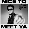 nice to meet ya chords by niall horan